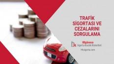 Trafik Sigortası ve Cezalarını Sorgulama