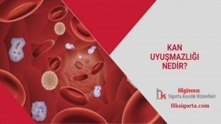 Kan Uyuşmazlığı Nedir?