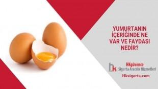 Yumurtanın içeriğinde Ne var ve Faydası Nedir?