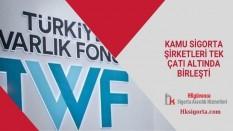 Türkiye Sigorta ve Birleşme