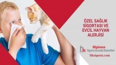 Özel Sağlık Sigortası ve Evcil Hayvan Alerjisi