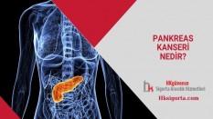 Pankreas Kanseri Nedir?