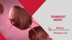 Trombosit Nedir ve Trombosit Sayımı