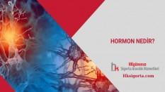 Hormon Nedir ve Nereden Salgılanıyor?