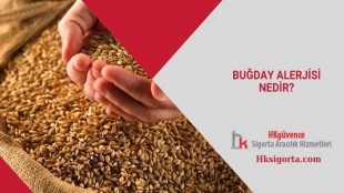 Buğday Alerjisi Nedir?
