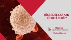 Yüksek Beyaz Kan Hücresi Nedir?