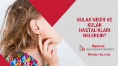 Kulak Nedir ve Kulak Hastalıkları Nelerdir?